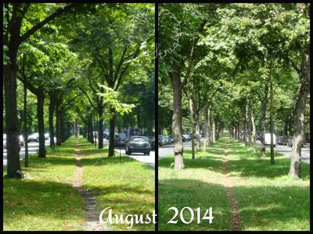 Blickwinkel im August