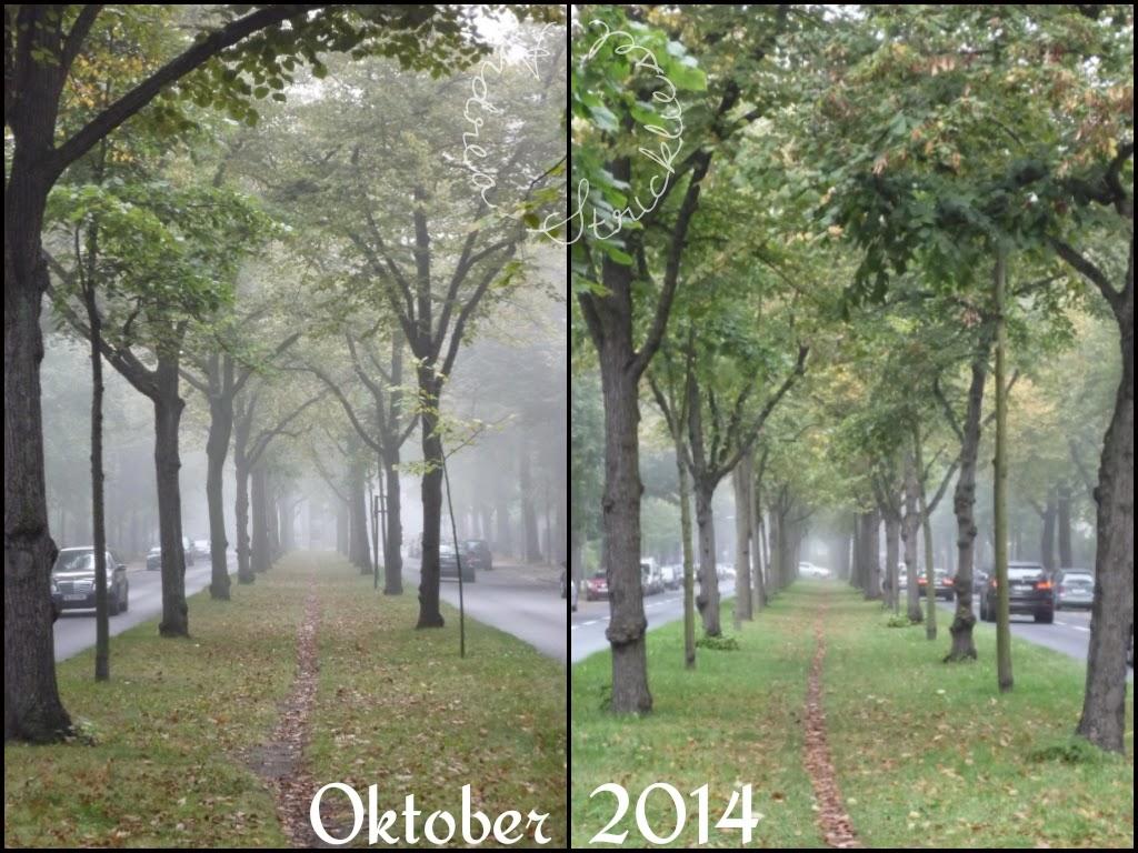 Blickwinkel im Oktober