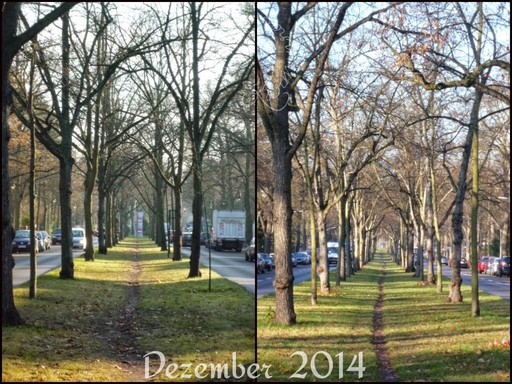 Der 12tel Blick im Dezember