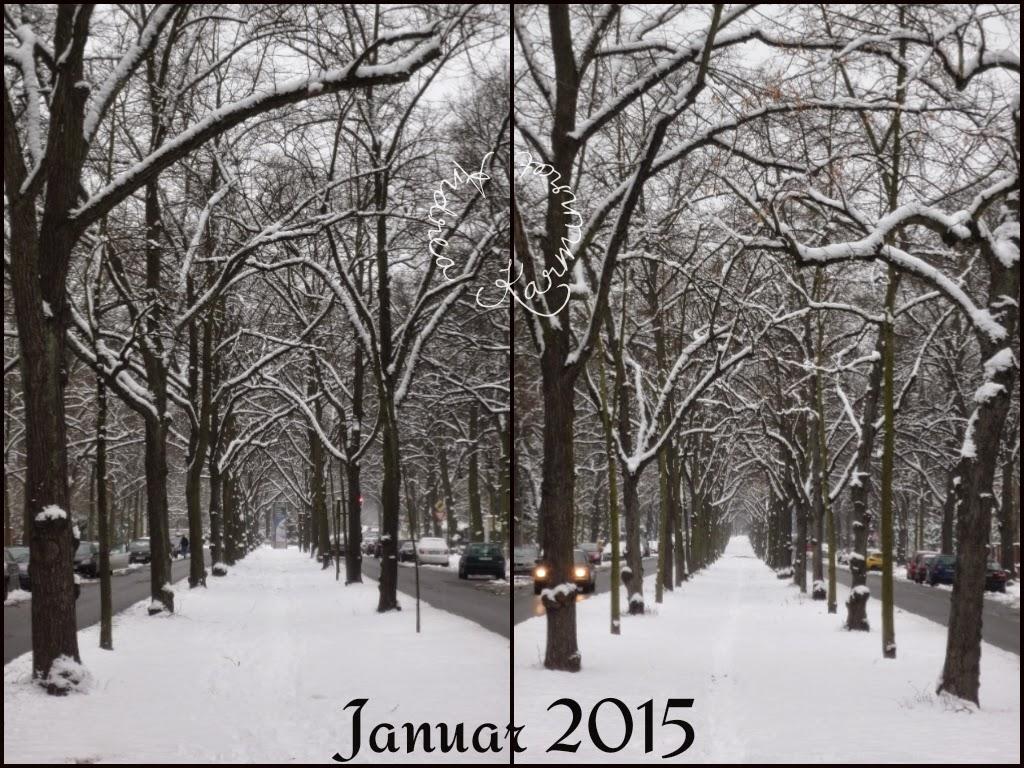 Januar und mein Blick auf die Allee