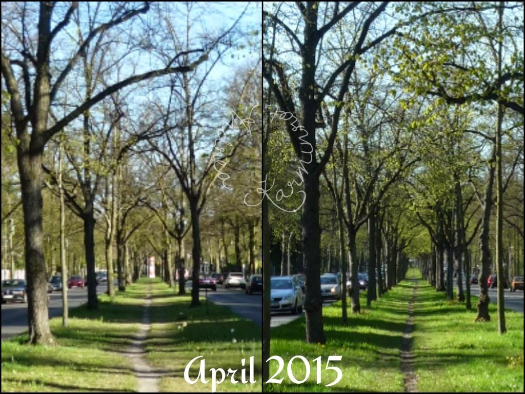12tel Blick im April