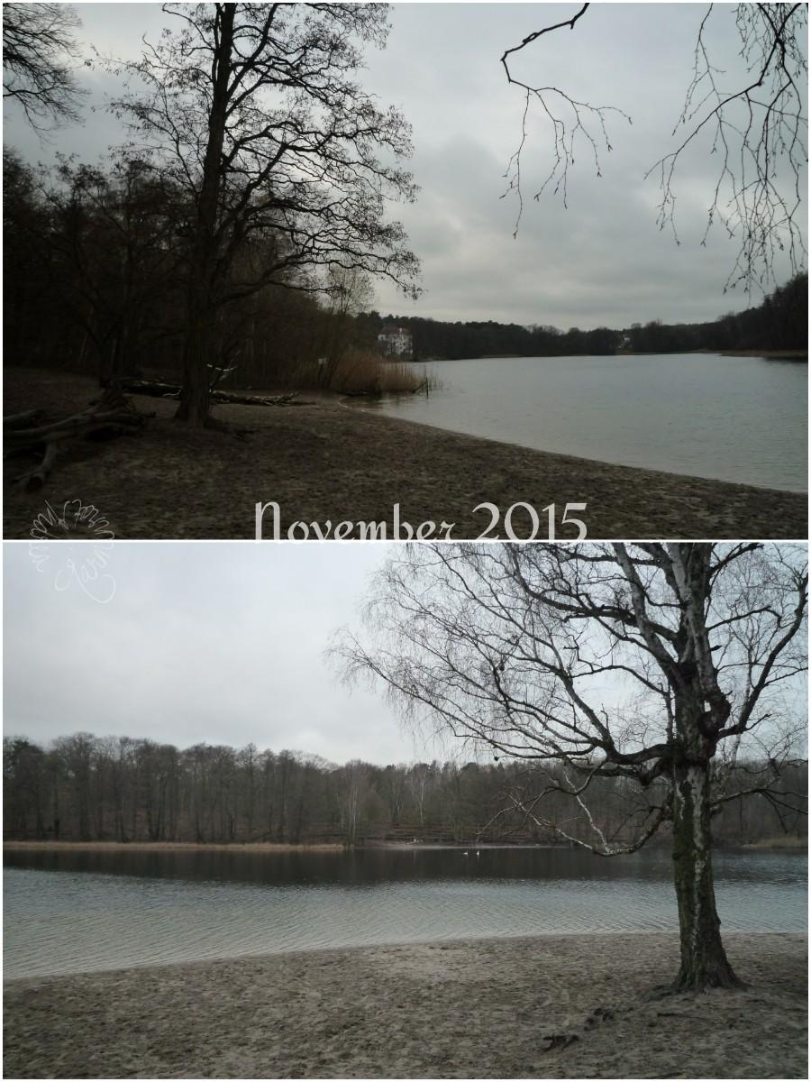 Der 12tel Blick vom November