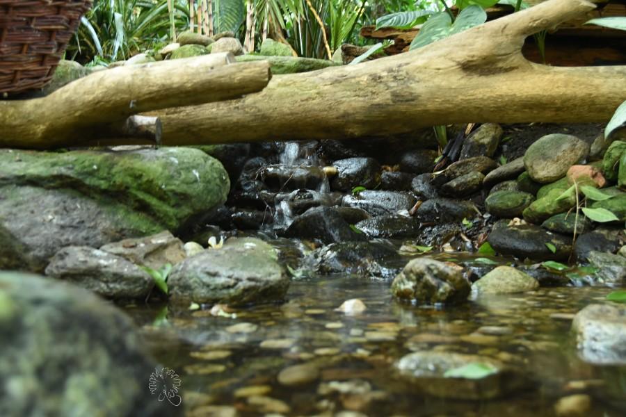 Wasser bei Cam Underfoot…