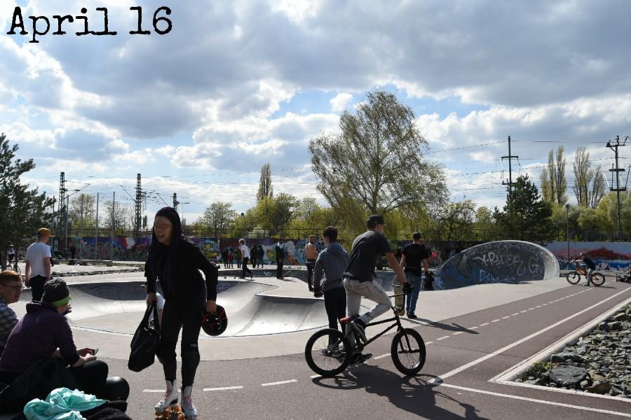Mein 12tel Blick in den Gleisdreieckpark