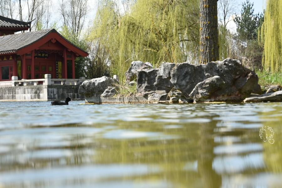 Wasser in den Gärten der Welt