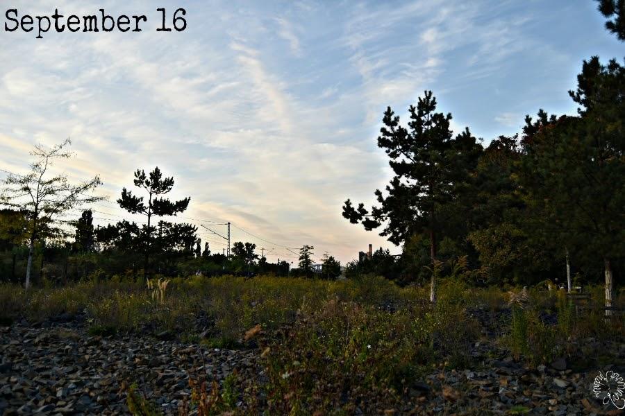 Der 12tel Blick im September