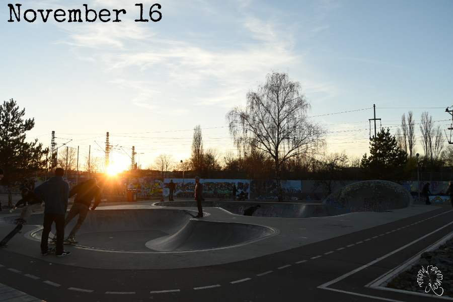 Der 12tel Blick vom November 2016