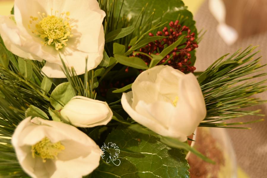 Christrosen, meine Freitagsblumen