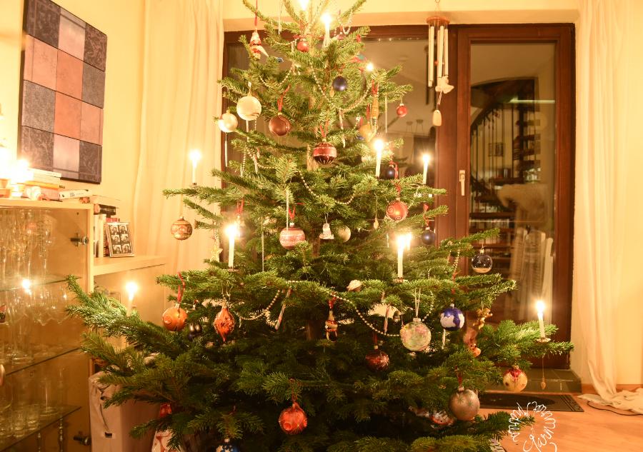 Die bunte Welt der Weihnachtsbäume