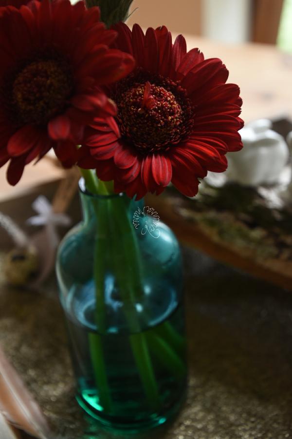 Rote Gerbera, Freitagsblumen und eine Geschichte aus der Stadt