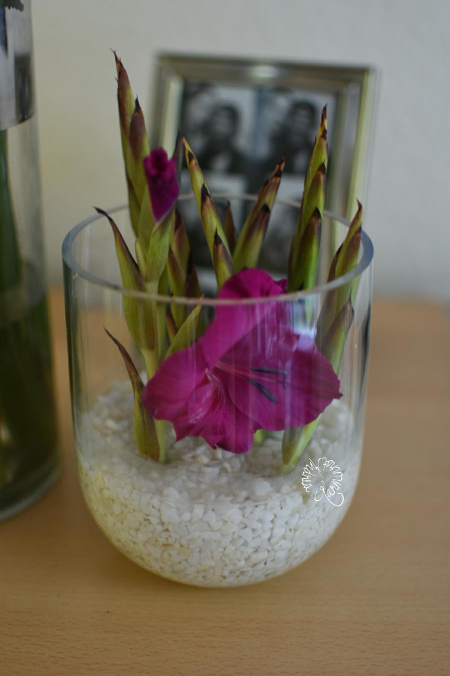 In einem Glas mit kleinen Steinchen