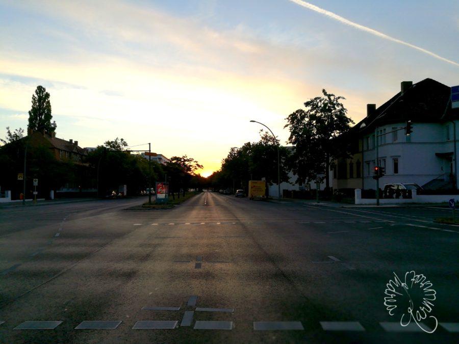 kalt aber schön, Blick über die Straße