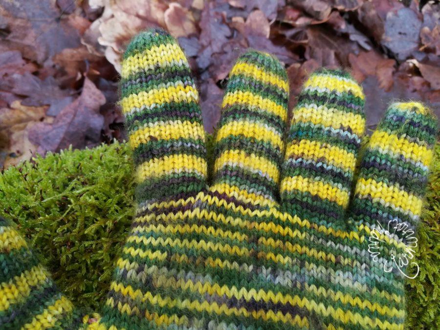 Winterlinge, oder gestrickte Handschuhe