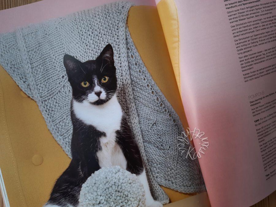 Katze in Cat Knits